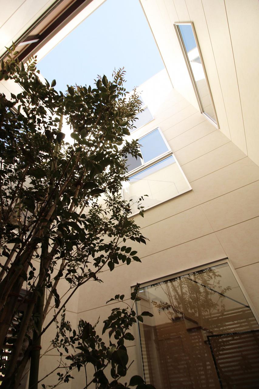 まさにプロが創り上げた作品。立体の空間、光の調和、木と緑と無機質物の融合。